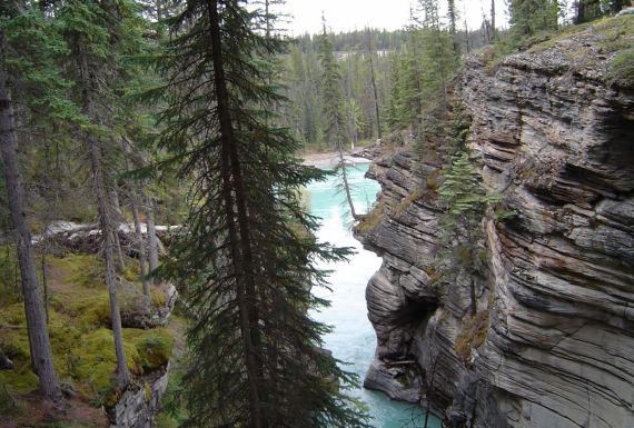 jasper nationalpark, urlaub, hotels