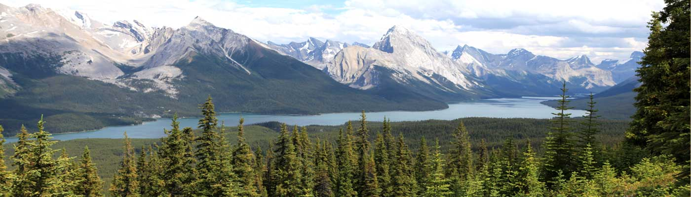 Tour Guides In Canada Jobs Working Outdoor Guide For Adventure Hiking And Canoe Tours Timberwolftours